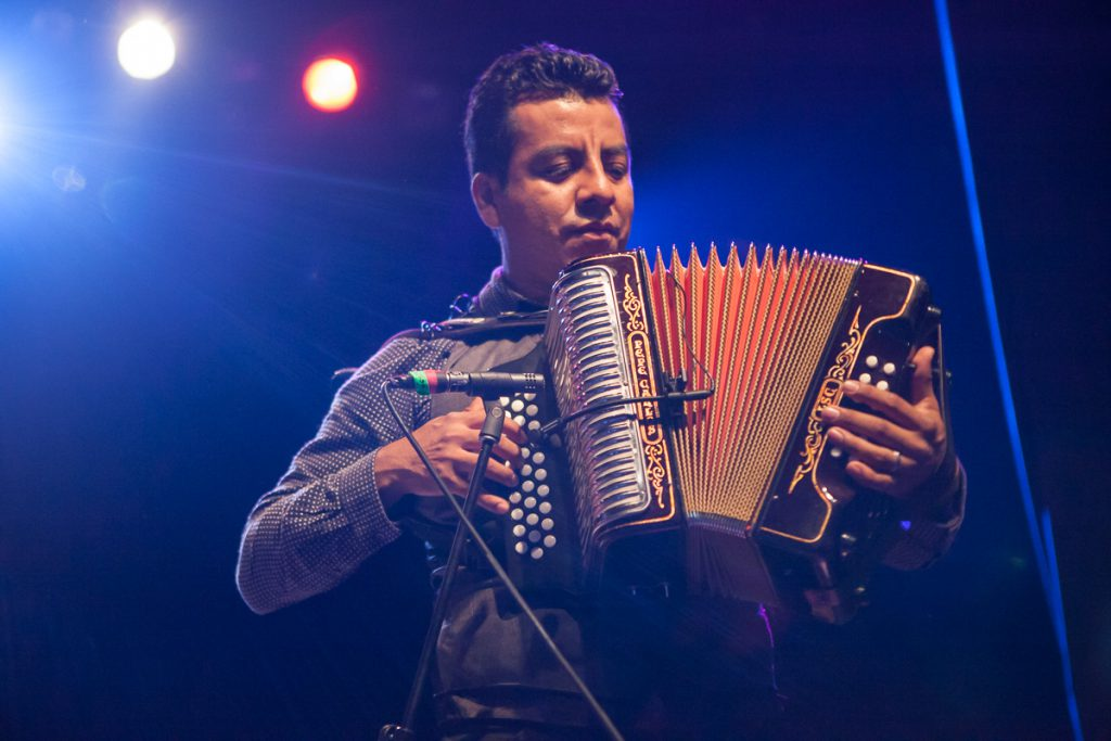 Accordion player at Rock Against the TPP