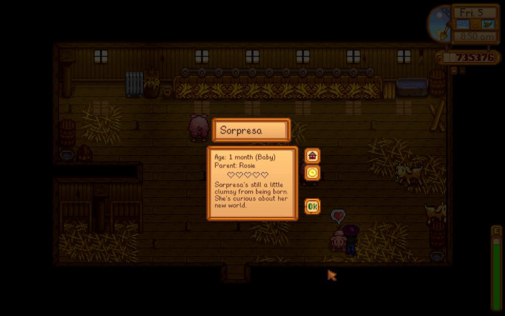 Stardew Valley newborn pig