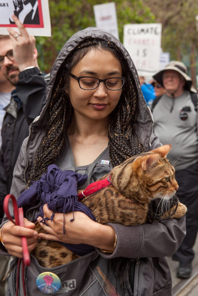Marching with cat
