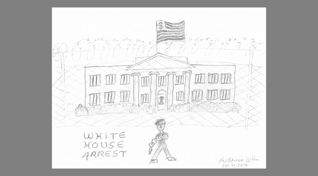 White House Arrest